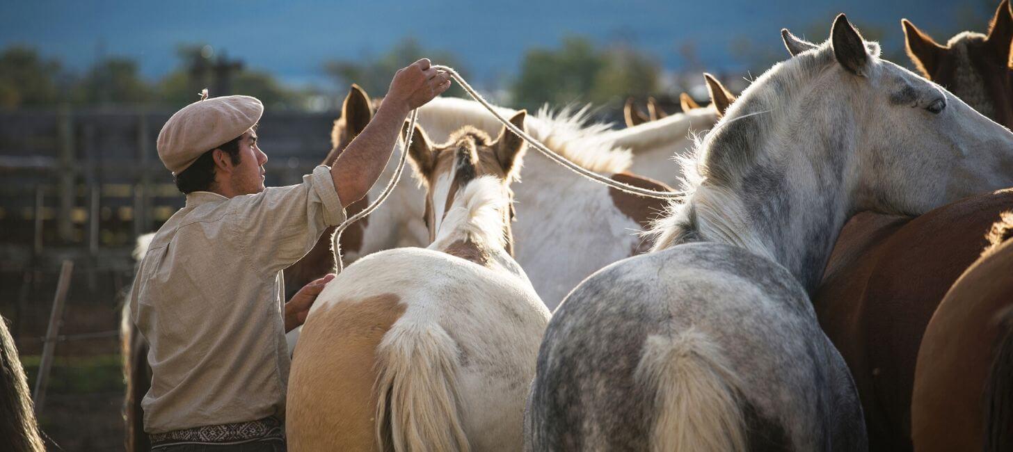 7 eventos para no perderse si estás en la Patagonia chilena durante el verano-1