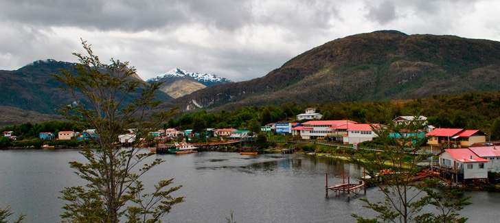 Flora and Fauna of Puerto Edén