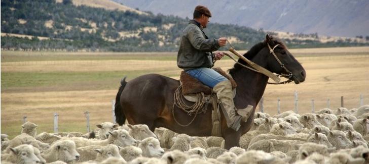 Top 5 folk festivals in Chilean Patagonia