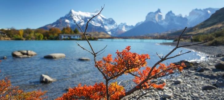 parques nacionales en patagonia chilena