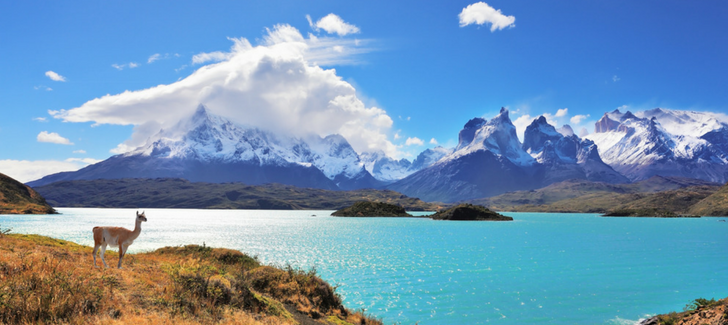 Help protect Patagonia from the comfort of your home